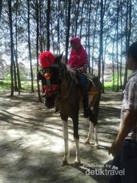 Sudah lihai, bisa naik kuda sendiri