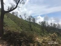 Pemandangan selama perjalanan menuju Kawah Ijen