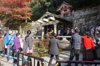 Para pengunjung mengantri untuk mengambil air mancur dengan berbagai harapan