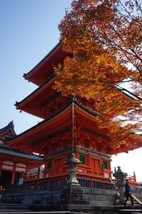 Kuil Kiyomizudera menjadi salah satu favorit untuk dikunjungi saat momiji (musim gugur)