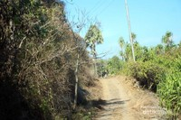 Jalan menuju Lamalera
