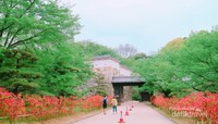 Jalan menuju gerbang Himeji Castle.