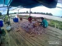 oleh-oleh khas desa pela adalah ikan asin yang murah, bersih dan enak.