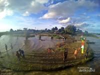 Tanjung Tamannoh adalah lokasi rekreasi di Desa Pela. Di sini adalah tempat terbaik untuk menyaksikan momen matahari tenggelam dan lokasi perkemahan.