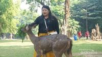 Taman Balekambang, taman ini dibangun oleh Mangkunegaran VII untuk kedua putrinya Partini dan Partinah. Di tempat ini banyak ditemui aneka binatang. Salah satunya rusa, rusa disini sudah terbiasa dekat dengan manusia. Kita bisa memberinya makan seperti kangkung.