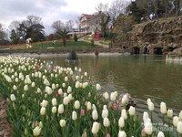 Kolam di Emirgan Park memberikan kesan antik dengan view bangunan antik, air terjun, jejeran bungan tulip di sepanjang kolam dan pemandangan alam di sekitar kolam.
