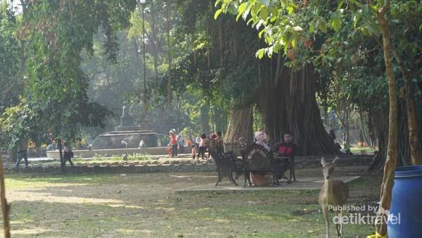 Taman Balekambang, taman ini dibangun oleh KGPAA Mangkunegoro VII untuk kedua putrinya Partini dan Partinah.