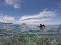 Berlibur ke Kalimantan Timur wajib memasukkan Danau Kakaban kedalam list anda.