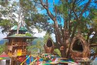 Banyak pohon-pohon besar nan rindang dengan rumah-rumah pohon unik untuk menikmati keindahan Danau Toba.