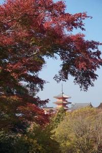 Kuil Kiyomizudera dengan dedaunan yang berwarna kemerahan saat musim gugur
