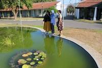 Setelah berkeliling pengunjung di persilahkan mengambil gambar , salah satunya adalah kolam di depan pendopo.