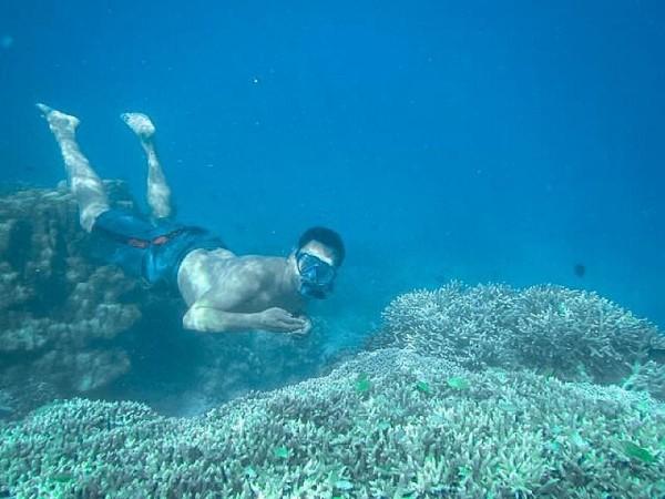 dekat pusat laut , mampir Snorekeling di Tanjung Karang