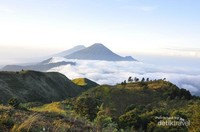 View Gunung Sindoro dan Sumbing