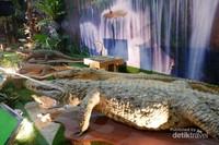 Replika hewan reptil