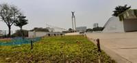 Pameran Flora dan Fauna (Flona) 2019 diadakan di area Lapangan Banteng