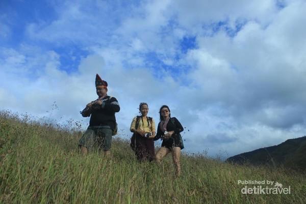 Bukit Holbung dipenuhi ilalang yang warnanya mengikuti musim. Hijau pada musim hujan dan kecoklatan pada musim kemarau.