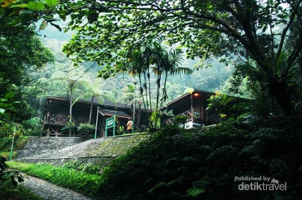 Stasiun penelitian Cikaniki yang berada di jantung hutan hujan tropis Taman Nasional Gunung Halimun Salak (TNGHS), Jawa Barat