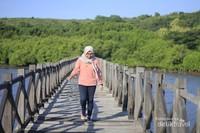 Hutan bakau yang menjadi spot photo