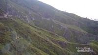 Lereng pegunungan di pagi hari terlihat menghijau