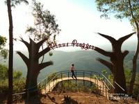 Instalasi Seni Jembatan Pinus