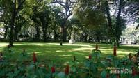Dibandingkan taman ain di Jakarta, taman ini terlihat lebih hijau dan rindang. Pepohonan menjulang tinggi membuat udara menjadi sejuk.