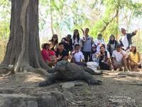 Pulau Komodo. Melihat hewan purba, Komodo, dari dekat. Siapa takut!