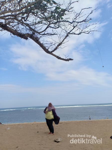 Perpaduan hijaunya rimbun pohon dan birunya pantai , menambah eksotika Pantai balekambang
