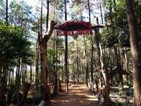 Camping Ground adalah area untuk melakukan kegiatan berkemah dia alam terbuka