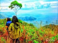Panorama Danau Toba