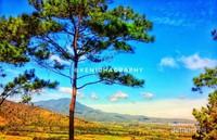 Pemandangan Indah dari bukit gajah bobok