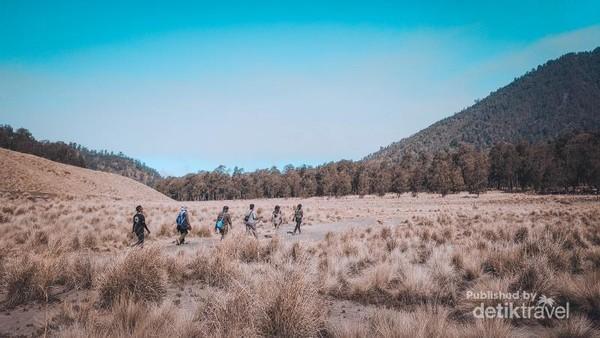Menuju Cemoro Kandang ditengah-tengah padang sabana Oro-oro Ombo