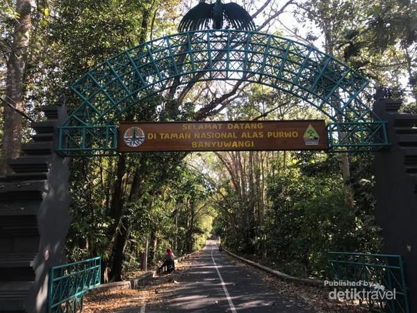 Pintu gerbang TN Alas Purwo