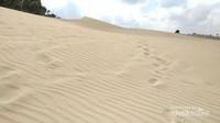 Kabupaten ini memiliki padang pasir yang berada di pesisir Pantai Oetune.
