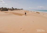 Gurun pasir ini berada di tepi Pantai Oetune yang menjadi kebanggaan masyarakat Timor Tengah Selatan.