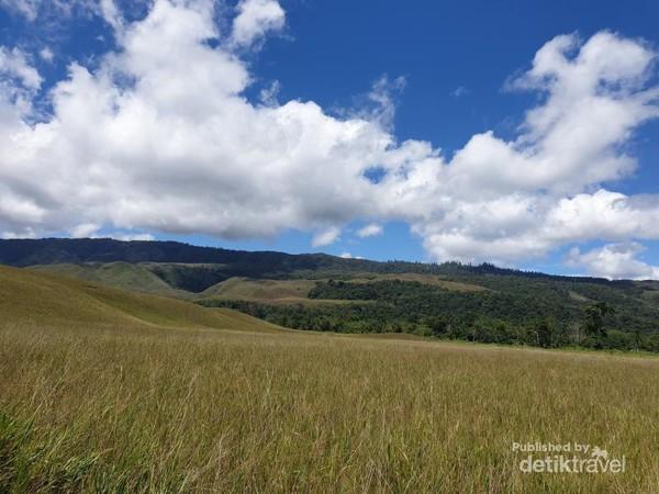 Hamparan padang rumput di Bukit Sontiri