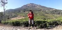 View Puncak Gunung Ungaran