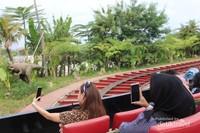 Saat naik kereta menyusuri Taman Jurasi pengunjung tak henti-henti mengambil gambar .