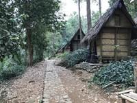 Perkampungan Suku Baduy di Lebak Banten yang bersih dan asri