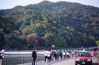 Pemandangan Indah di seberang Arabica Arashiyama
