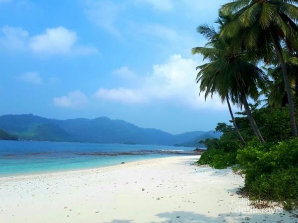 Tepi pulau yang di dominasi jajaran pulau kelapa