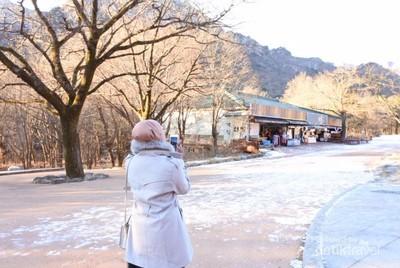 Tips Traveling Saat Musim Dingin di Korea Selatan