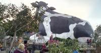 Ini dia Lembu Sora, ikon Boyolali