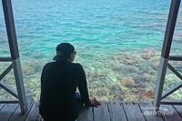 Menikmati siang santai didepan kamar sembari melihat ragam terumbu karang
