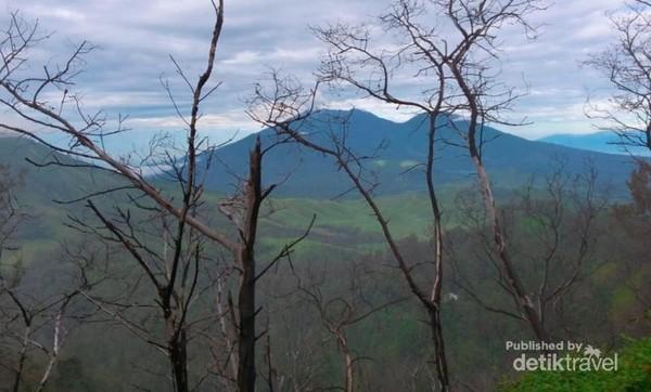 Penorama pegunungan di sekitar Gunung Ijen,