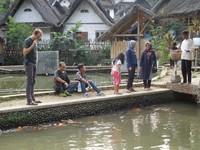Selain bertani, penduduk Kampung Naga juga ada yang mempunyai kolam-kolam ikan