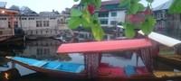 Shikara, perahu tradisional yang dilengkapi dengan sofa nyaman dan kelambu yang cantik