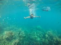Free dive di Karimunjawa