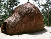 Ini adalah ume kbubu, rumah adat orang Timor.