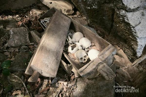 Tumpukan Tengkorak dalam peti jenazah terbuat dari kayu