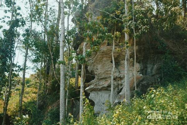Gua di Kampung Penggoli tertutup semak dan pepohonan menjulang tinggi